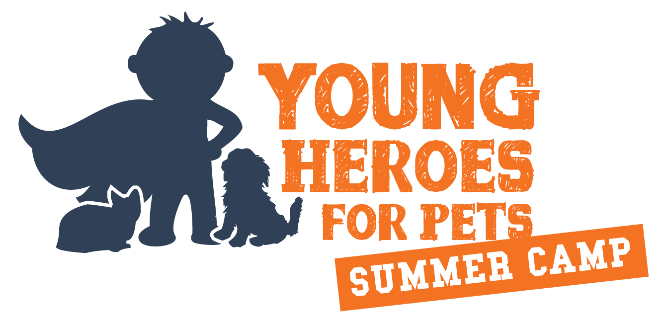 Young Heroes Summer Camp
